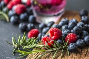 Plantas y antioxidantes