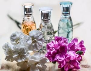Plantas y perfume